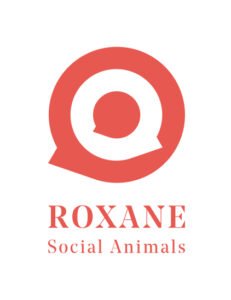 The Roxane Company